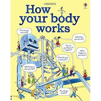 Wie funktioniert Ihr Körper
