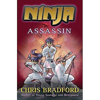 Ninja: Assassin (Ninja 3)