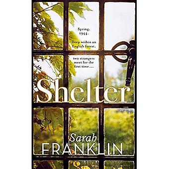 Shelter: `One of the year's hottest debuts'