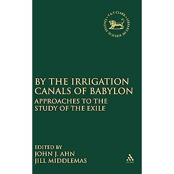 By the Irrigation Canals of Babylon Approaches to the Study of the Exile by Ahn