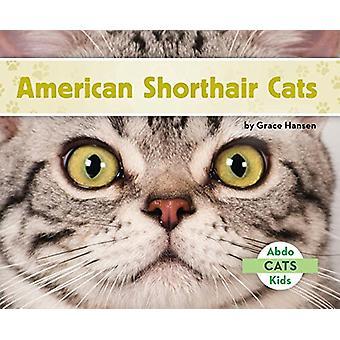 American Shorthair Cats by Grace Hansen - 9781680809183 Book
