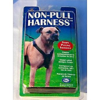 Non Pull Harness-small