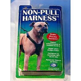 Non Pull Harness-small