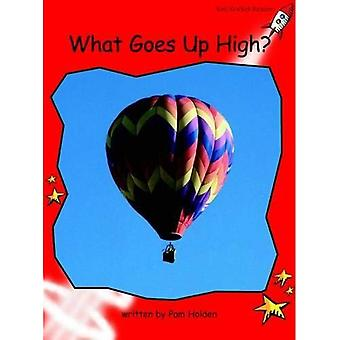 What Goes Up High?: Level 1: Early (Red Rocket Readers: Non-fiction Set A)