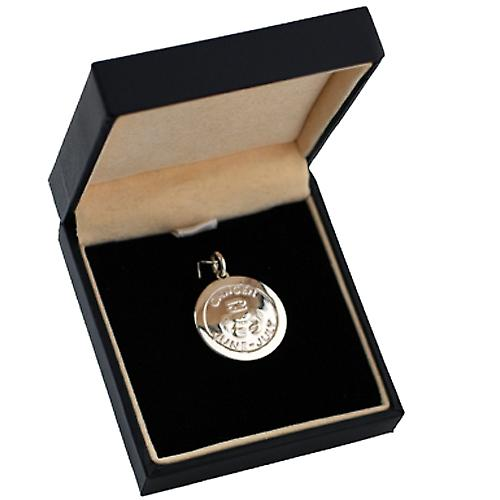 Silver 22mm round Zodiac Disc Pendant Cancer