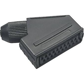SCART connector Socket, right angle Number of pins: 21 Black BKL Electronic 0903014 1 pc(s)