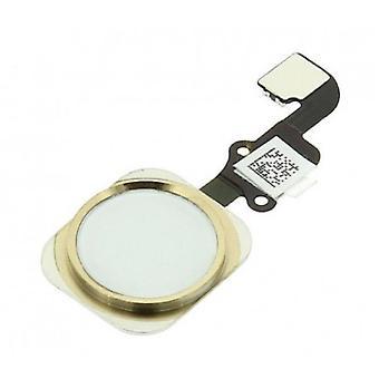 Spullen Certified® voor Apple iPhone 6/6 Plus -A + Home Button Flex kabel assemblage met goud