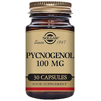 Solgar Pycnogenol 100 mg Vegetable Capsules (Vitamins & supplements , Multinutrients)