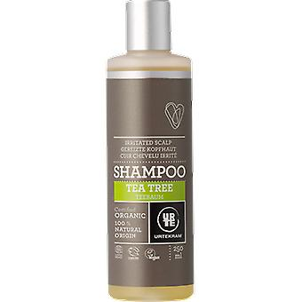 Urtekram Tea Tree Shampoo 250 Ml Bio
