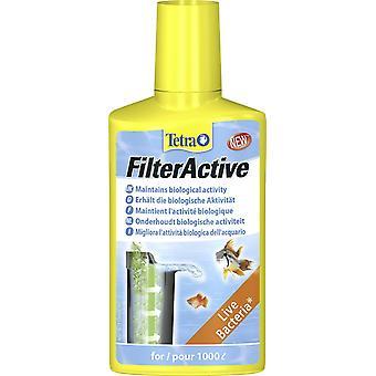 Activa de filtro Tetra 250ml