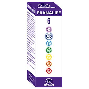 Equisalud Pranalife 6 (Dietetics and nutrition , Bach Flower)