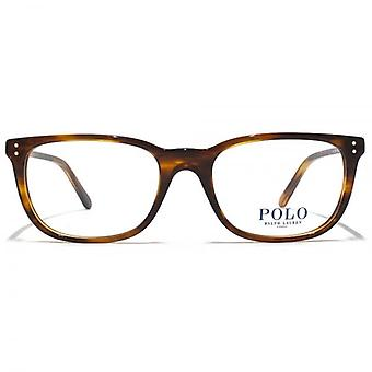 Polo Ralph Lauren PH2156 Glasses In Striped Havana