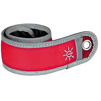 Trixie Flash band (Dogs , Collars, Leads and Harnesses , Collars)