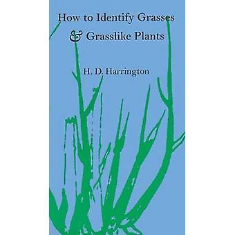 Hur man identifierar gräs och Grasslike växter - halvgräs och rusar av H.