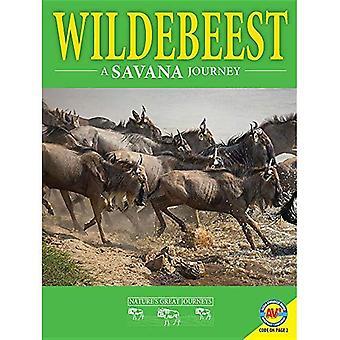 Wildebeest: A Savanna Journey