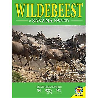 Wildebeest: En Savanna resa