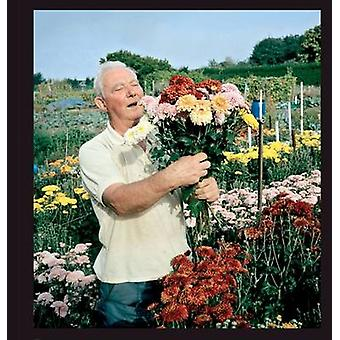 Allotments by Andrew Buurman - 9781904587736 Book