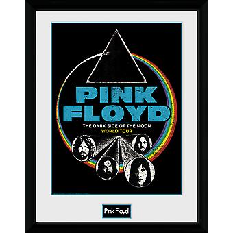 Pink Floyd Dsom World Tour Collector Print