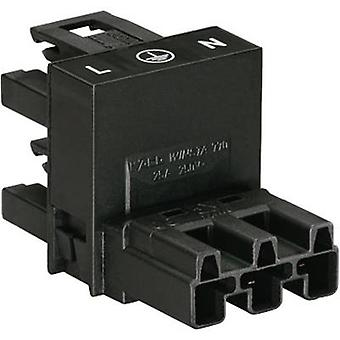 Mains H distributor Mains plug-Mains socket, Mains socket Total number of pins: 2 + PE Black WAGO 770-636