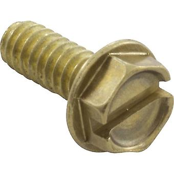 Pentair 98215100 Brass Hex Head Screw for Pump