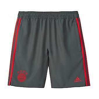 2018-2019 Bayern Munich Adidas Woven Shorts (Utility Ivy) - Kids