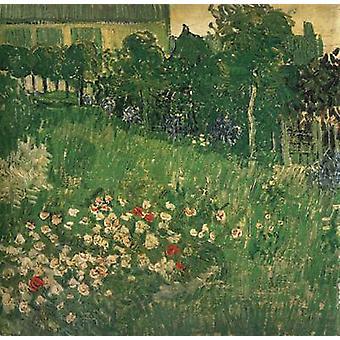 Daubigny's Garden, Vincent Van Gogh, 50.7 x 50.7 cm