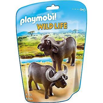 PLAYMOBIL Tierwelt - Wasserbüffel Zahlen