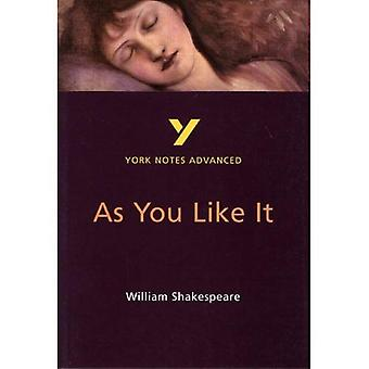 York Notes on William Shakespeare's  As You Like It : Study Notes (York Notes Advanced)