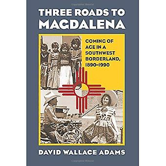 Three Roads to Magdalena: Coming of Age in a Southwest Borderland, 1890 - 1990