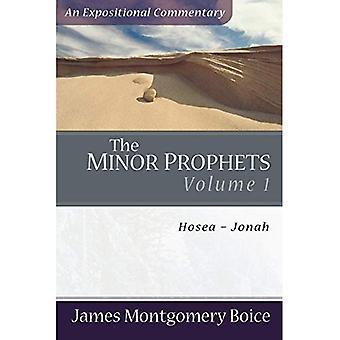 De mindre profeterna: Hosea-Jonah v. 1 (Expositional kommentar)