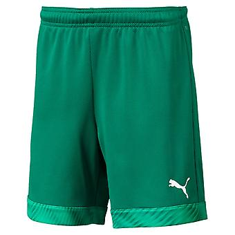 PUMA CUP s Jr kids of shorts pepper green-white