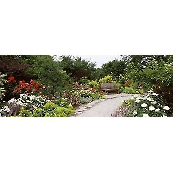 Bench in a garden Olbrich Botanical Gardens Madison Wisconsin USA Poster Print