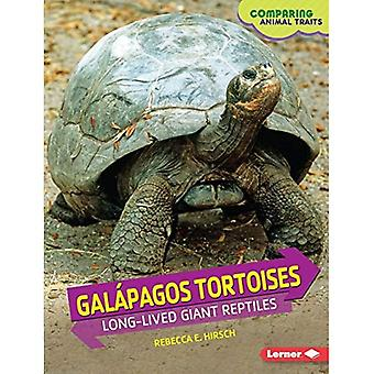 Galpagos Tortoises: Long-Lived Giant Reptiles (Comparing Animal Traits)