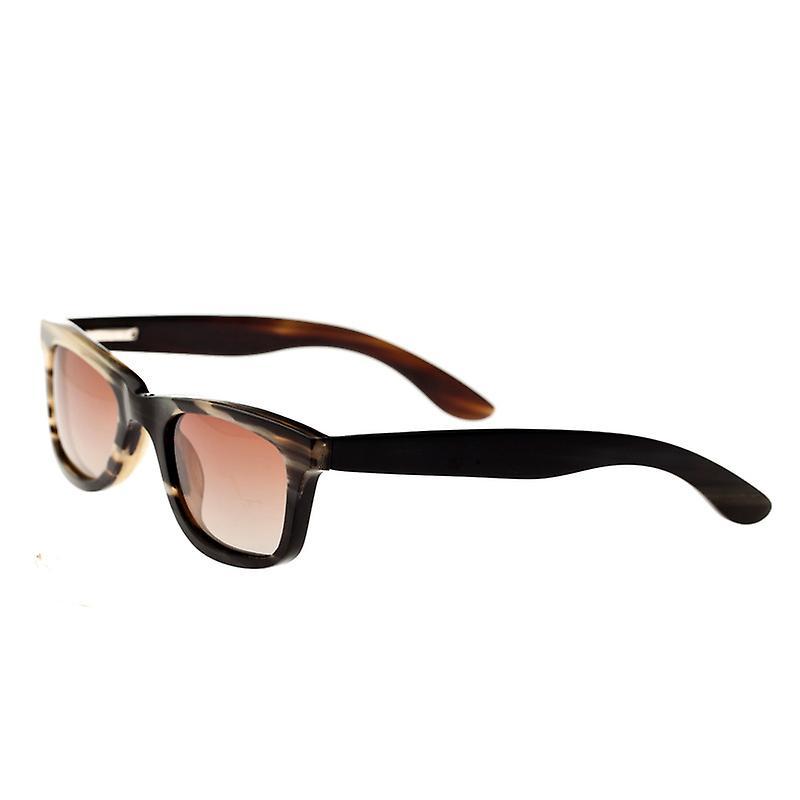 Bertha Zoe-corne de buffle Polarized lunettes de soleil - noir-Tan noir