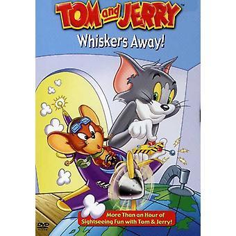 Tom & Jerry - importer des loin [DVD] é.-u. de moustaches