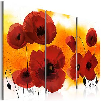 Canvas Print - Sunny afternoon and poppies