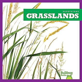 Grasslands (Ecosystems)