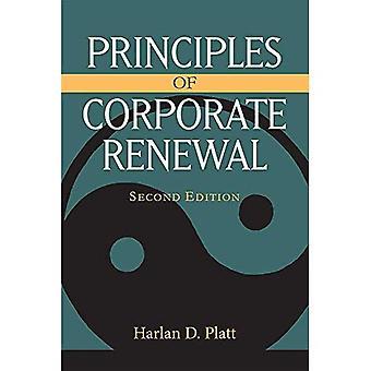 Principer för förnyelse av företag