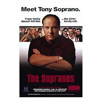 Sopranos Movie Poster (11 x 17)