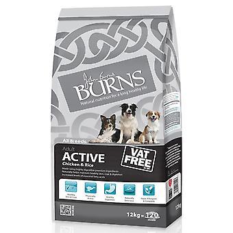 Burns aktive Adult kylling & ris 12kg