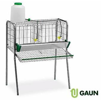 Gaun Battery Hens 2 apartments legless (Birds , Chickens , Cages)