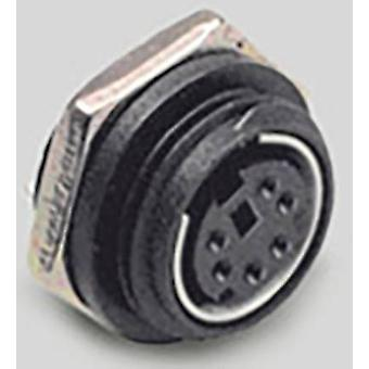 Mini DIN connector Socket, vertical vertical Number of pins: 8 Black BKL Electronic 0204038 1 pc(s)