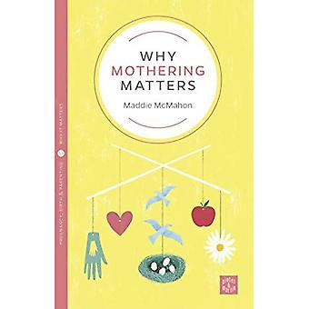 Why Mothering Matters (Pinter & Martin Why it Matters)