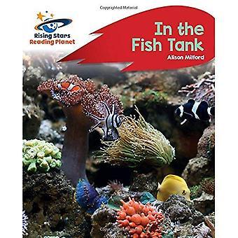 Lecture de planète - dans le réservoir de poissons - B: rouge Rocket Phonics (Rising Stars lire la planète)