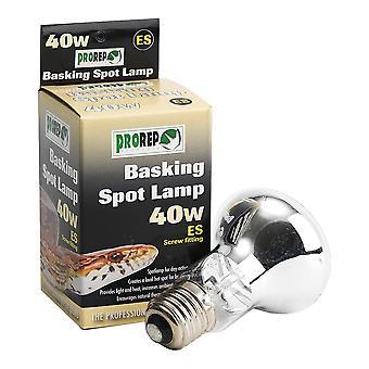 ProRep Basking Spot Lamp 100w ES