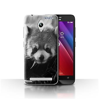 STUFF4 Case/Cover for Asus Zenfone Go ZC500TG/Racoon/Mono Zoo Animals
