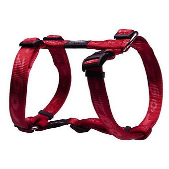 Rogz Harness Everest (Dogs , Walking Accessories , Harnesses)