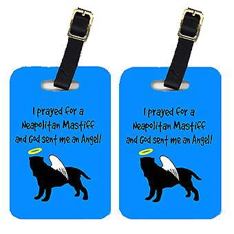 Carolines Treasures  AN1088BT Pair of 2 Neapolitan Mastiff  Luggage Tags
