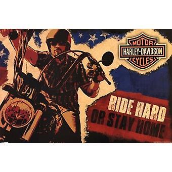 Harley Davidson - ехать жестком Плакат Плакат Печать