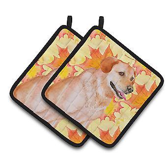 キャロラインズ宝物 BB9975PTHD ラブラドル ・ レトリーバー犬秋のポット ホルダー ペア